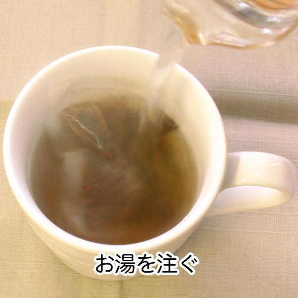 送料無料 どくだし減脂茶・箱 各16パック×2個 プチ断食 ファスティングダイエット ダイエット茶 hl-labo 04