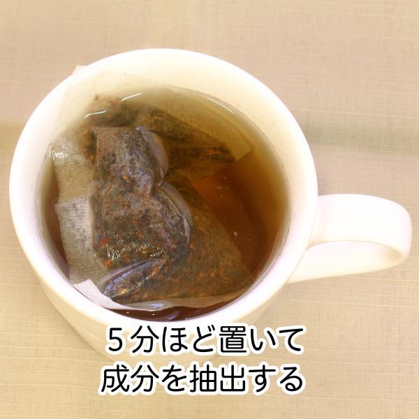 送料無料 どくだし減脂茶・箱 各16パック×2個 プチ断食 ファスティングダイエット ダイエット茶 hl-labo 05