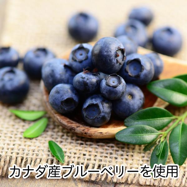 高品質のカナダ産ブルーベリーを使用
