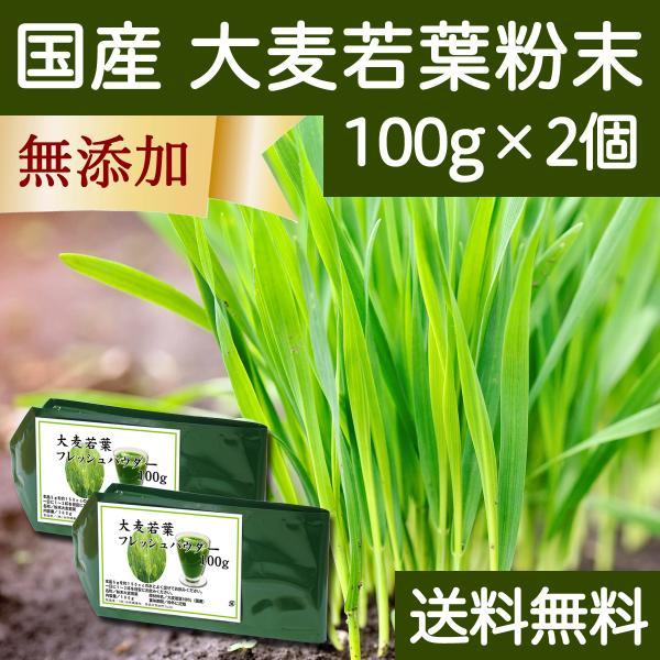 送料無料 国産・大麦若葉粉末100g×2個 無添加 100% 青汁スムージーに 野菜不足の方に 無農薬 hl-labo