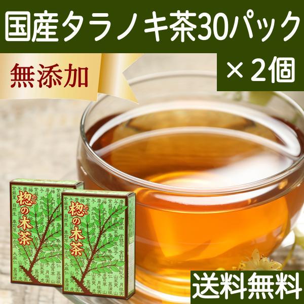 送料無料 国産タラノキ茶6g×30パック×2個 濃厚な煮出し用ティーバッグ サポニン タラの葉使用 ティーパック 自然健康社|hl-labo