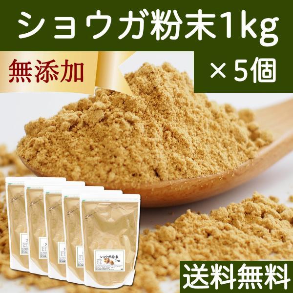 ショウガ 粉末 1kg×5個 生姜 パウダー しょうが 粉末 ジンジャー