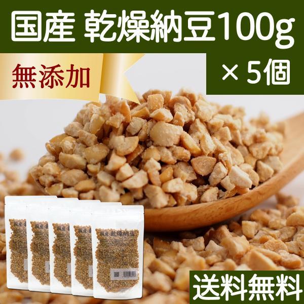 乾燥納豆 100g×5個 ドライ納豆 国産 フリーズドライ 挽き割り納豆 送料無料
