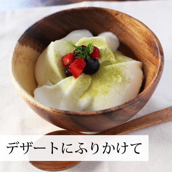 送料無料 国産ゴーヤ粉末100g×3個 沖縄産 青汁 サプリメント 無添加 まるごと 丸ごと 100% ゴーヤー パウダー 苦瓜 にがうり ジュースに hl-labo 10