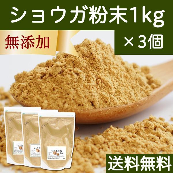 ショウガ 粉末 1kg×3個 生姜 パウダー しょうが 粉末 ジンジャー