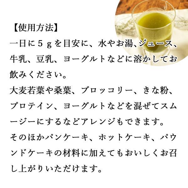 送料無料 国産ゴーヤ粉末 380g×3個 沖縄産 青汁 サプリメント 無添加 まるごと 丸ごと 100% ゴーヤー パウダー 苦瓜 にがうり ジュースに|hl-labo|04