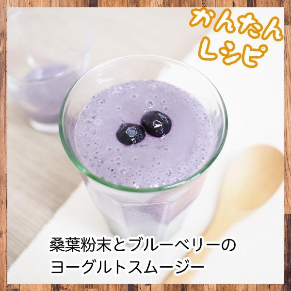 送料無料 国産・桑葉青汁粉末100g×3個 無添加 100% 青汁スムージーに 野菜不足、食物繊維不足に|hl-labo|12