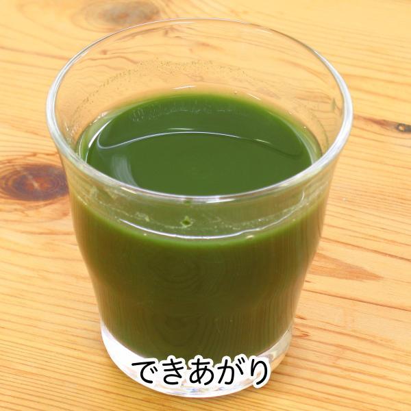 送料無料 国産・桑葉青汁粉末100g×3個 無添加 100% 青汁スムージーに 野菜不足、食物繊維不足に|hl-labo|09