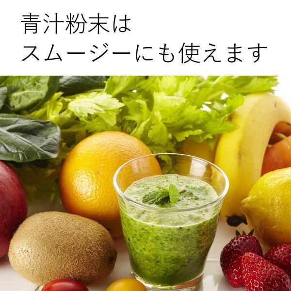 送料無料 国産・桑葉青汁粉末100g×3個 無添加 100% 青汁スムージーに 野菜不足、食物繊維不足に|hl-labo|10