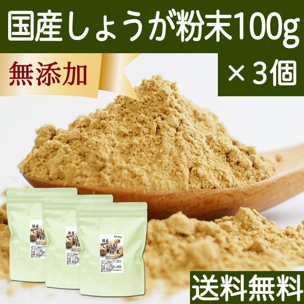 しょうが 粉末 100g×3個 生姜 パウダー ショウガ 粉末 国産 送料無料