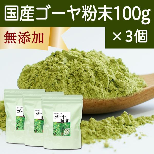 国産ゴーヤ粉末100g×3個 沖縄産 青汁 サプリメント 無添加 まるごと 丸ごと 100% ゴーヤー パウダー 苦瓜 にがうり ジュースに hl-labo