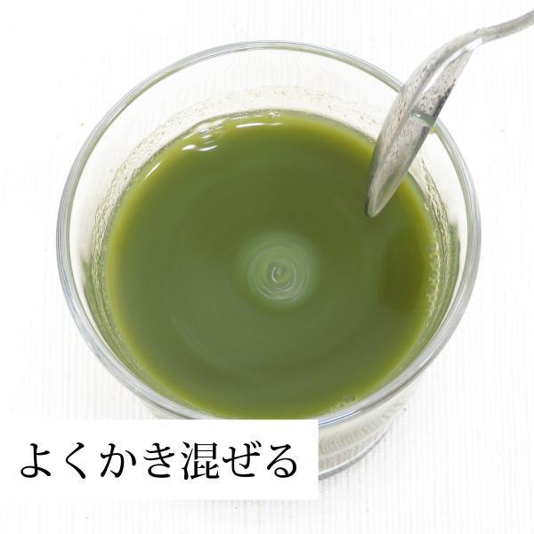 国産3種の青汁粉末100g×3個 明日葉 あしたば アシタバ ゴーヤ 長命草 ボタンボウフウ 無添加 100% 青汁 パウダー クロロゲン酸 ポリフェノール|hl-labo|09