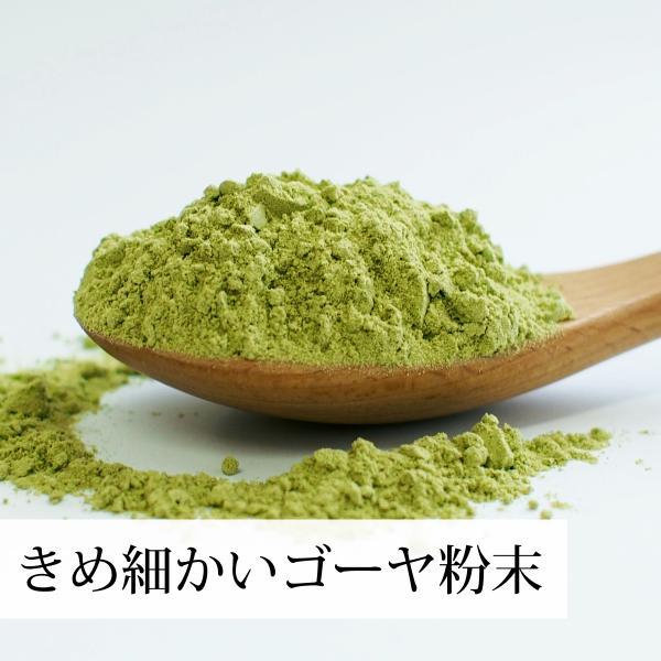 国産ゴーヤ粉末100g×10個 沖縄産 青汁 サプリメント 無添加 まるごと 丸ごと 100% ゴーヤー パウダー 苦瓜 にがうり ジュースに|hl-labo|06