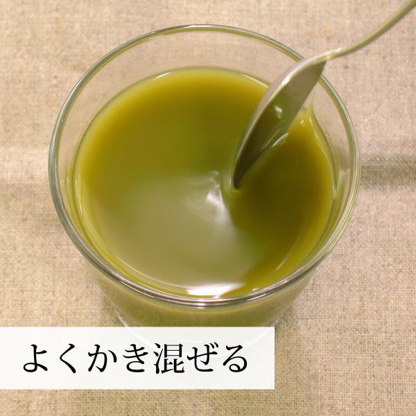 国産ゴーヤ粉末100g×10個 沖縄産 青汁 サプリメント 無添加 まるごと 丸ごと 100% ゴーヤー パウダー 苦瓜 にがうり ジュースに|hl-labo|08