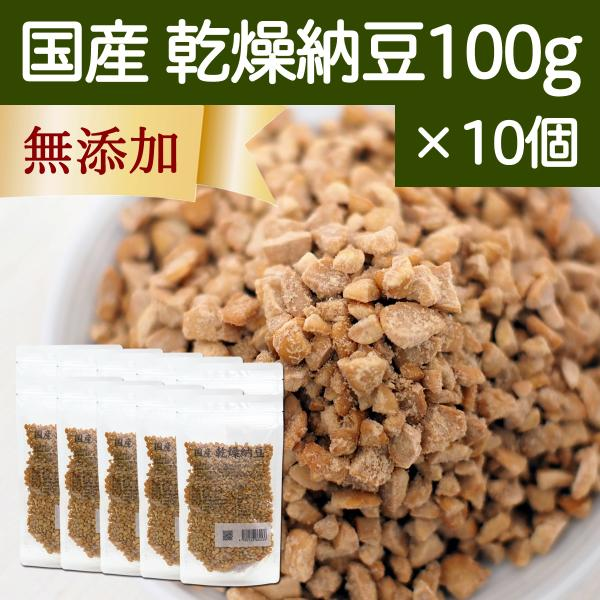乾燥納豆 100g×10個 ドライ納豆 国産 フリーズドライ 挽き割り納豆