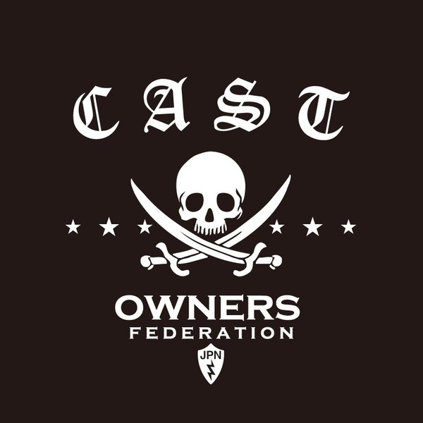 カッティングステッカー ダイハツ(DAIHATSU)CAST キャスト pirates 車 カー ステッカー  アクセサリー シール ガラス オーダーメイド  転写[◆]