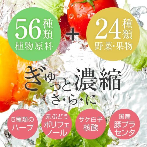 きらきら 酵素ドリンク 720ml(コラーゲンペプチド ヒアルロン酸 美容ドリンク サプリメント collagen supplement)|hogarakagenki|02