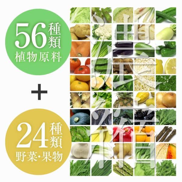 きらきら 酵素ドリンク 720ml(コラーゲンペプチド ヒアルロン酸 美容ドリンク サプリメント collagen supplement)|hogarakagenki|08