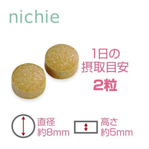 国産 牡蠣肉エキス サプリメント 60粒(タウリン)|hogarakagenki|02