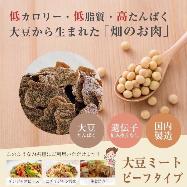 大豆ミート ビーフ フィレ バラ肉 タイプ 500g(ソイミート 業務用) hogarakagenki 03