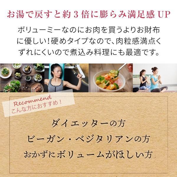 大豆ミート ビーフ フィレ バラ肉 タイプ 500g(ソイミート 業務用) hogarakagenki 05