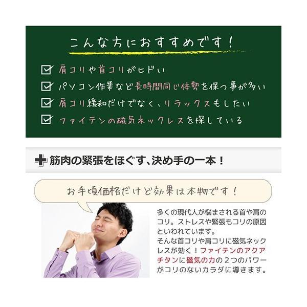 ファイテン 磁気ネックレスS RAKUWA ファイテン磁気チタンネックレス S|hogushiyahonpo|02