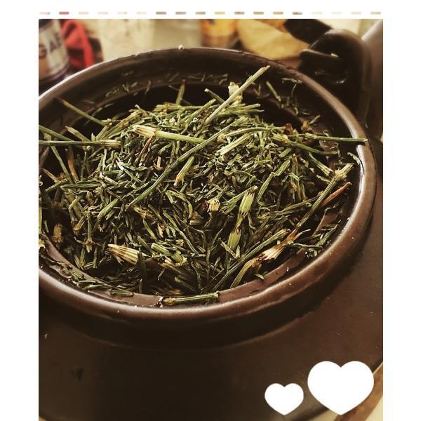 すぎな茶 スギナ茶 すぎな粉 無農薬 湯布院産 薬草茶 カルシウム マグネシウム  ケイ素 健康維持茶 (30g × 1袋)|hohoshop1010|04