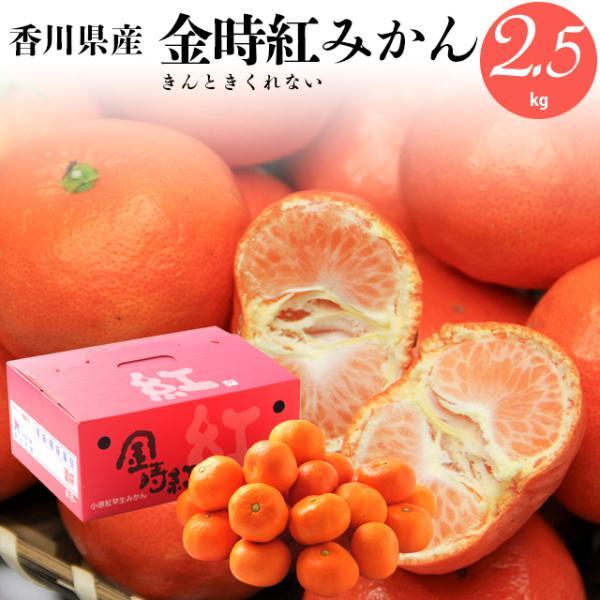 毎年12月上旬〜出荷開始 ギフト フルーツ みかん 送料無料 香川県産 金時紅みかん 2.5kg / 果物 青果 プレゼント ギフト