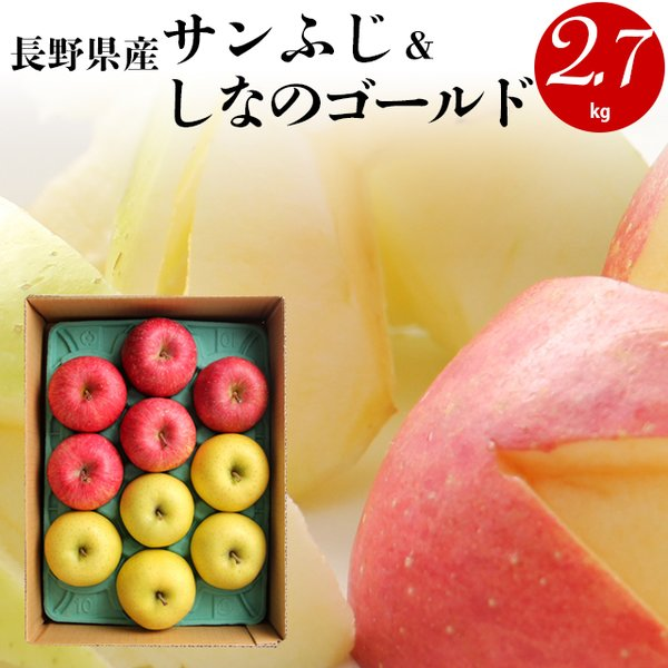 毎年12月上旬〜出荷開始 ギフト フルーツ りんご 送料無料 長野県産 サンふじ&シナノゴールド 2.7kg / 果物 青果 プレゼント ギフト