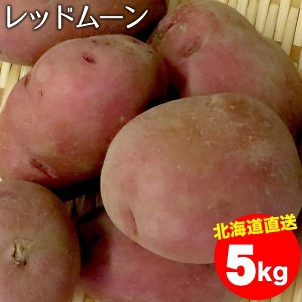 予約受付中 新じゃがいも 送料無料 北海道産 じゃがいも レッドムーン(M〜2Lサイズ)1箱5キロ入り / 5キロ 5kg 取り寄せ 北海道 REDMOON