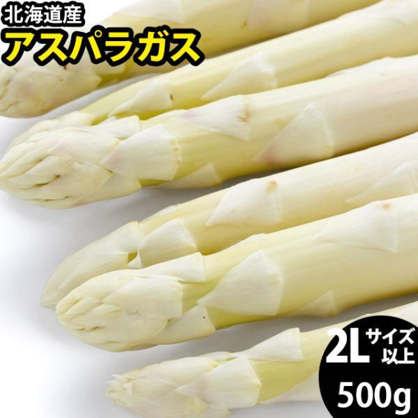 予約受付中 送料無料 北海道産 ホワイトアスパラガス 500g (2L/3Lサイズ混合) / 白 あすぱら アスパラ 旬 野菜 産地直送 サラダ ソテー 大きいサイズ