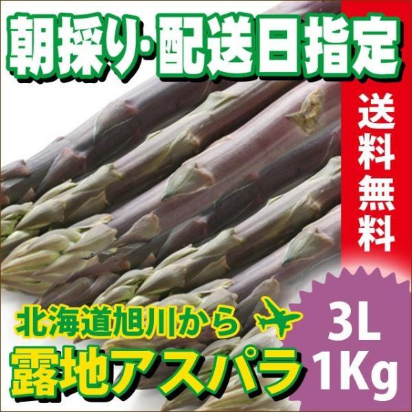 2017年ご予約承り中 5月出荷開始 送料無料 北海道産 紫アスパラ 1Kg 3Lサイズ【国産 国内産 産地直送 お取り寄せ 新鮮 ギフト 旬 露地物 野菜】|hokkaido-gourmation