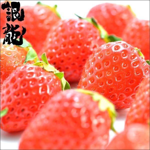 北海道産 銀龍苺「さがほのか」(1シート) / 送料無料 いちご イチゴ 産地直送 十勝 フルーツ 果物|hokkaido-gourmation|02