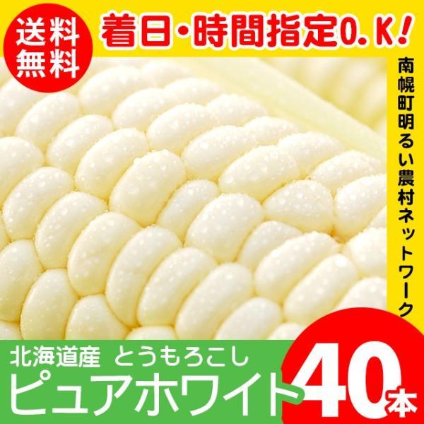 予約受付中 とうもろこし 北海道産 ピュアホワイト 40本入り 南幌町明るい農村ネットワーク / トウモロコシ 産地直送 白い