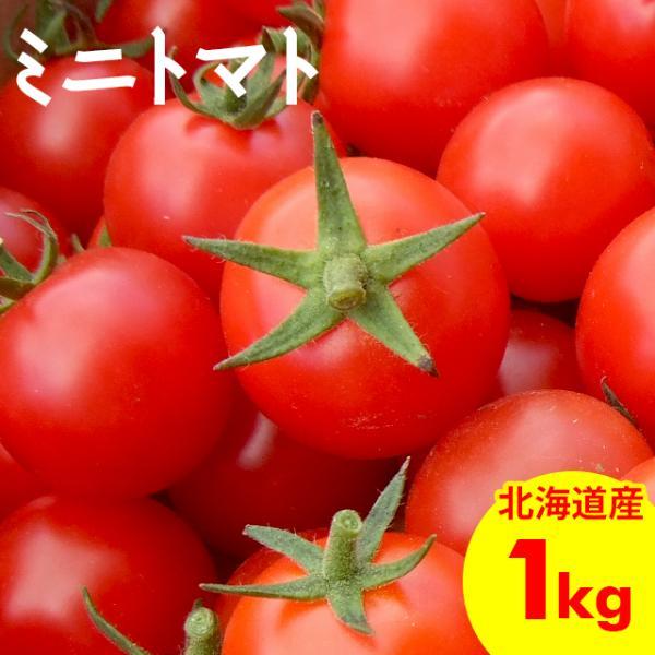 予約受付中 南幌町明るい農村ネットワーク ミニトマト 自宅用 1.0kg バラ詰め / フルーツトマト お取り寄せ とまと 甘い