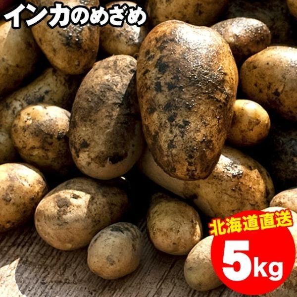 予約受付中 送料無料 北海道産 インカのめざめ(S〜L混合サイズ:5kg)/ じゃがいも ジャガイモ 5キロ
