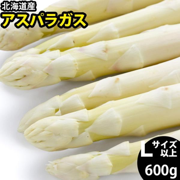 予約受付中 送料無料 北海道産 ホワイトアスパラガス 600g (2L/Lサイズ混合) / 白 あすぱら アスパラ 旬 野菜 産地直送 サラダ ソテー 大きいサイズ