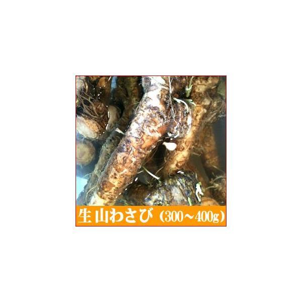 プレゼント 惣菜 ギフト 山菜 生 山わさび 300〜400g / わさび 山葵 山ワサビ 瓶詰 薬味 調味料 スパイス 山菜 加工品 北海道