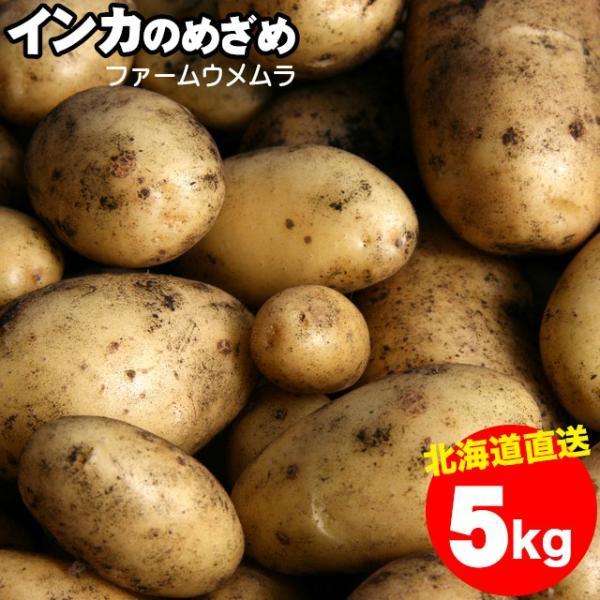 新じゃが 送料無料 北海道産 千歳ファーム・ウメムラ 完熟インカのめざめ 5kg / 5キロ インカの目覚め 野菜 ジャガイモ じゃがいも 人気 小さめ 新鮮 直送