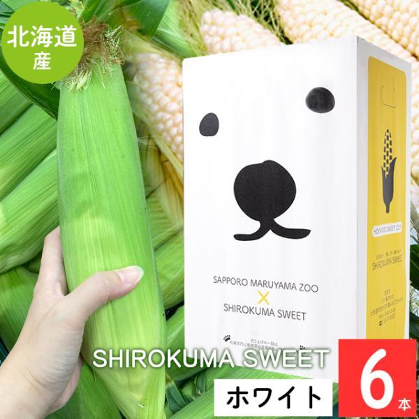 予約受付中 とうもろこし 北海道 送料無料 SHIROKUMA SWEET 北海道産 ホワイトコーン 6本 / 産地直送 ピュアホワイト ホワイトショコラ 雪の妖精 とうきび