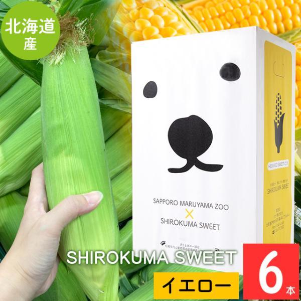 予約受付中 とうもろこし 北海道 送料無料 SHIROKUMA SWEET 北海道産 イエローコーン 6本 / 産地直送 味来 恵み ゴールドラッシュ 黄色系 とうきび