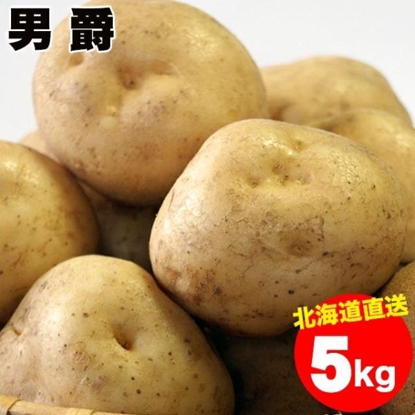 予約受付中 新じゃがいも 送料無料 北海道産 男爵薯(M-2L混合) 1箱5キロ入り / 5kg 男爵 男爵芋 だんしゃく いも ジャガイモ 北海道 野菜