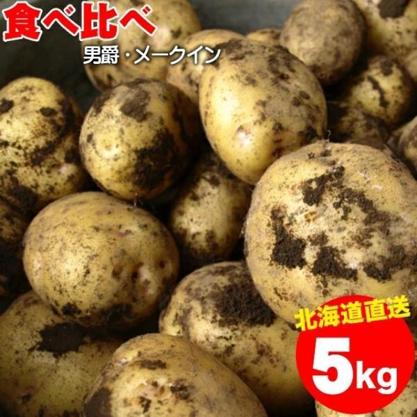 予約受付中 送料無料 北海道産 じゃがいも食べ比べセット 5kg(男爵3kg・メークイン2kg/計5kg)/ 5キロ 5kg 5キロ 男爵芋 男爵薯