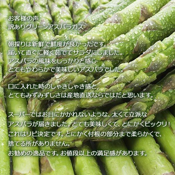 アスパラガス グリーン アスパラ 1kg 北海道産 訳あり S/2L混|hokkaido-marche|05