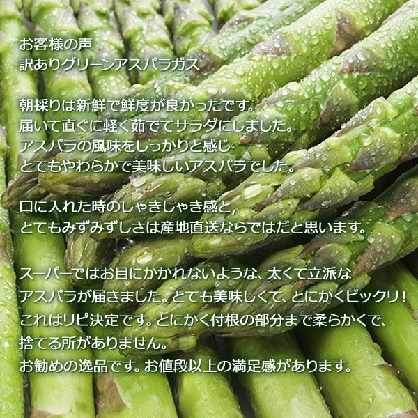 アスパラガス グリーン アスパラ 1kg 北海道産 訳あり S/2L混|hokkaido-marche|06