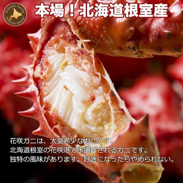 敬老の日 ギフト 2017 花咲蟹 1.1kg × 1尾 希少な 花咲蟹 北海道産 蟹|hokkaido-marche|02