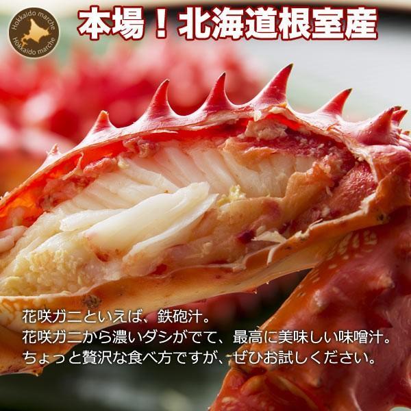 敬老の日 ギフト 2017 花咲蟹 1.1kg × 1尾 希少な 花咲蟹 北海道産 蟹|hokkaido-marche|03