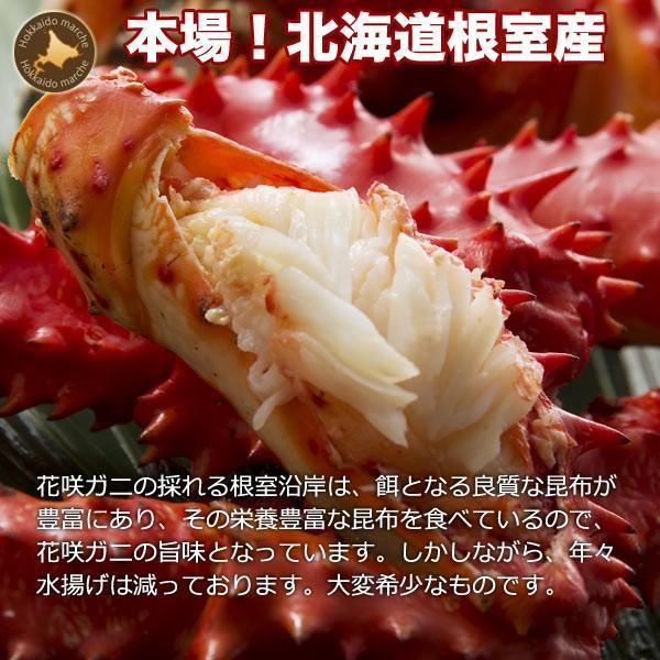 敬老の日 ギフト 2017 花咲蟹 1.1kg × 1尾 希少な 花咲蟹 北海道産 蟹|hokkaido-marche|05