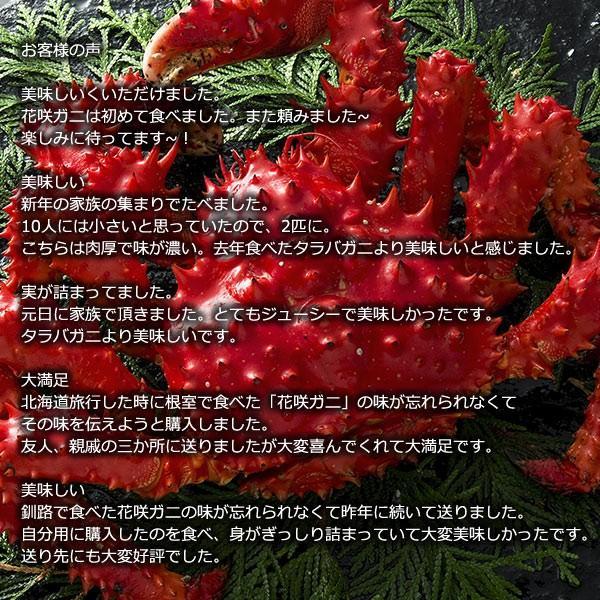 敬老の日 ギフト 2017 花咲蟹 1.1kg × 1尾 希少な 花咲蟹 北海道産 蟹|hokkaido-marche|06