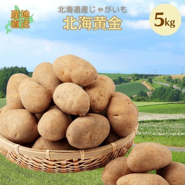 じゃがいも 北海道 北海黄金 5kg 正品・LM/L/2L混 【新じゃがいも】